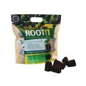 Root cubetti