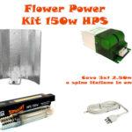 Kit Super Plant