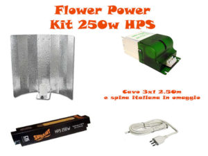 Kit Super Plant HPS 250W Fioritura BASE